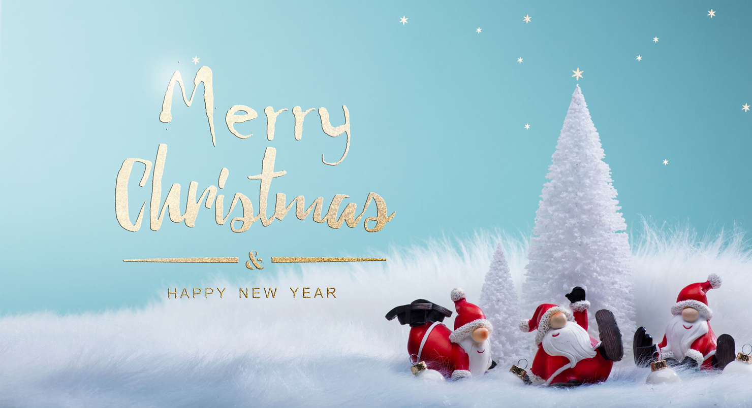 Immagini Natale Email.Banner Email Natale 1480 Camping Village Paradiso